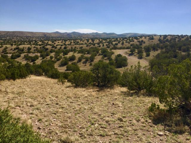 66 Forest Road 123, Magdalena, NM 87825 (MLS #924850) :: Campbell & Campbell Real Estate Services