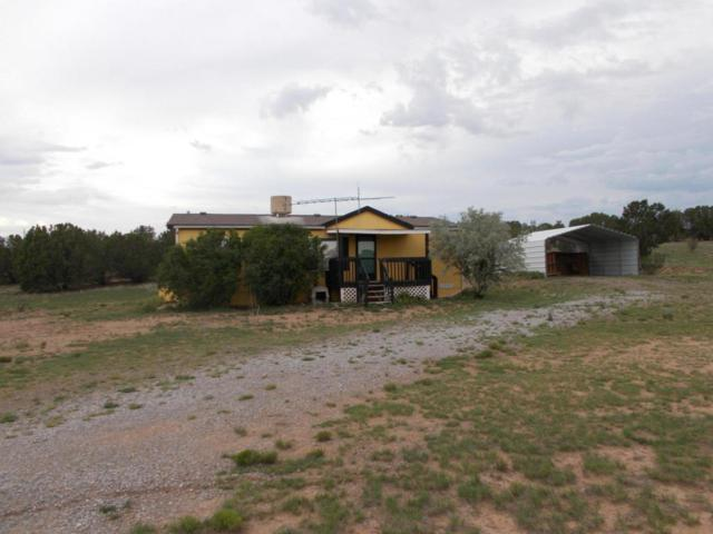 3350 Martinez Road, Moriarty, NM 87035 (MLS #925050) :: Campbell & Campbell Real Estate Services