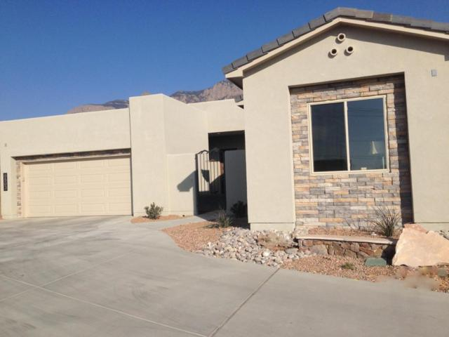 9204 Desert Ridge Pointe Court NE, Albuquerque, NM 87122 (MLS #925077) :: Campbell & Campbell Real Estate Services