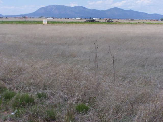 0 Capitan Street, Moriarty, NM 87035 (MLS #925150) :: Campbell & Campbell Real Estate Services