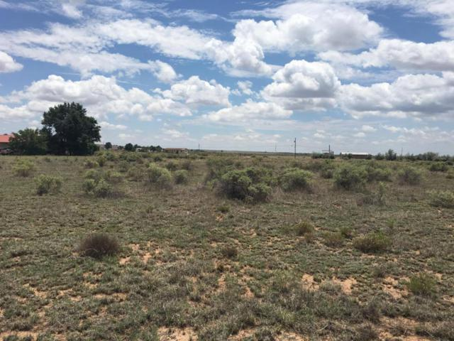 Martinez Road, Moriarty, NM 87035 (MLS #925329) :: The Bigelow Team / Red Fox Realty