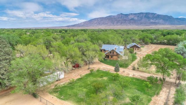 415 Rincon Road, Corrales, NM 87048 (MLS #925339) :: Campbell & Campbell Real Estate Services