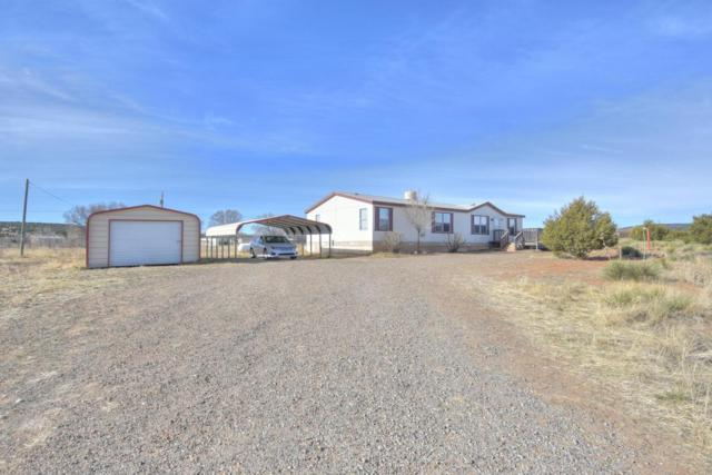7 Adams Road, Edgewood, NM 87015 (MLS #925401) :: Campbell & Campbell Real Estate Services