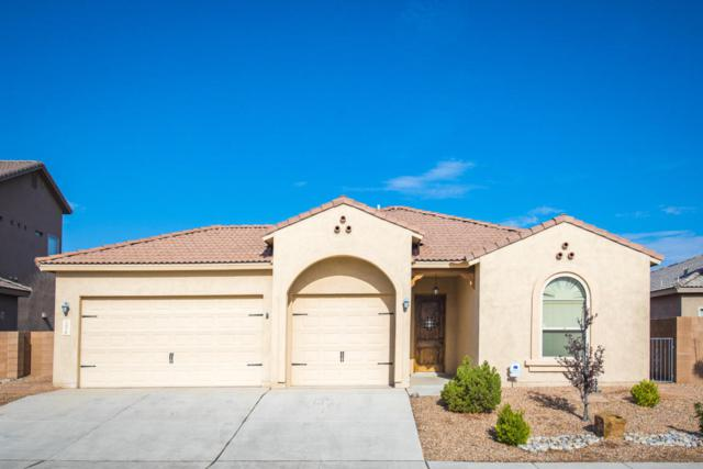1017 Palo Alto Court, Bernalillo, NM 87004 (MLS #925492) :: Campbell & Campbell Real Estate Services