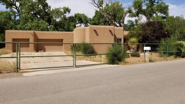 170 Autumn Lane, Corrales, NM 87048 (MLS #925526) :: Campbell & Campbell Real Estate Services