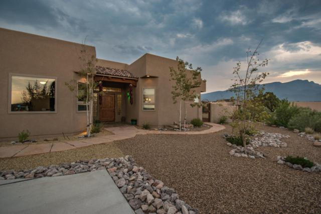 39 Petroglyph Trail, Placitas, NM 87043 (MLS #925553) :: Campbell & Campbell Real Estate Services