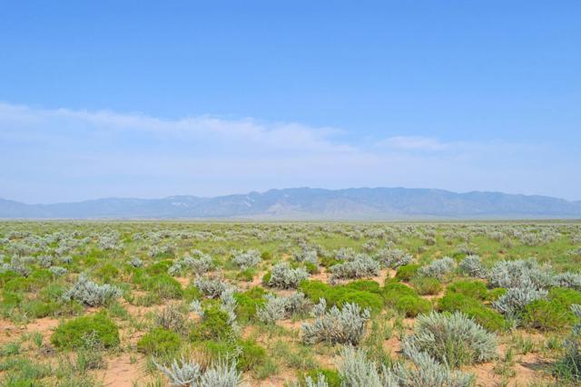 Lot 24 Rio Grande Estates, Rio Communities, NM 87002 (MLS #925565) :: The Bigelow Team / Realty One of New Mexico