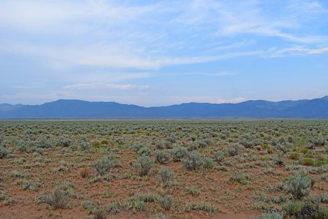 Lot 181 Rancho Rio Grande, Los Lunas, NM 87031 (MLS #925569) :: The Bigelow Team / Realty One of New Mexico