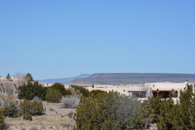 1 Alexi Place, Placitas, NM 87043 (MLS #925697) :: Campbell & Campbell Real Estate Services