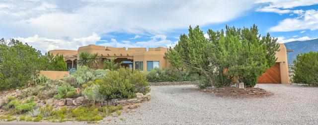 100 Camino Barranca, Placitas, NM 87043 (MLS #925715) :: Campbell & Campbell Real Estate Services