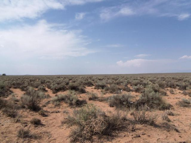 Hartel Way, Belen, NM 87002 (MLS #925720) :: The Bigelow Team / Realty One of New Mexico