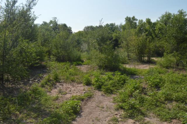 East Valverde, Corrales, NM 87048 (MLS #925811) :: Campbell & Campbell Real Estate Services