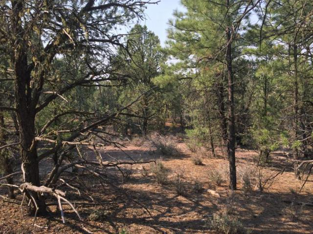 Lot 9 Sagebrush Road, Ramah, NM 87321 (MLS #925955) :: Campbell & Campbell Real Estate Services