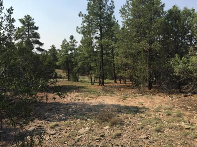 Lot 10 Sagebrush Road, Ramah, NM 87321 (MLS #925959) :: Campbell & Campbell Real Estate Services
