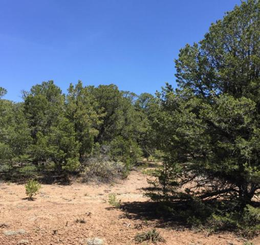 41 San Pedro View, Tijeras, NM 87059 (MLS #926153) :: Campbell & Campbell Real Estate Services
