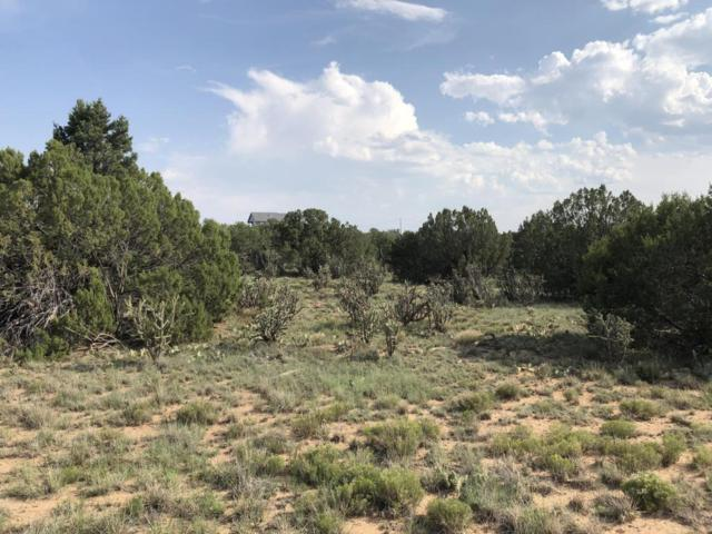 16 Quarter Moon Hill Road, Edgewood, NM 87015 (MLS #926190) :: Campbell & Campbell Real Estate Services