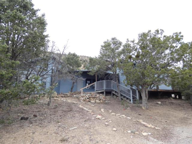 133 Rincon Loop, Tijeras, NM 87059 (MLS #926243) :: Campbell & Campbell Real Estate Services