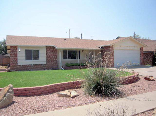 9012 Haines Avenue, Albuquerque, NM 87112 (MLS #926299) :: Campbell & Campbell Real Estate Services