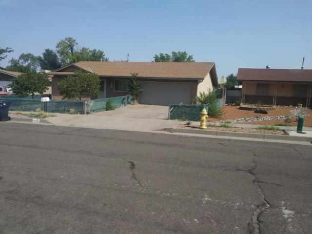 6309 Belcher Avenue NE, Albuquerque, NM 87109 (MLS #926300) :: Campbell & Campbell Real Estate Services