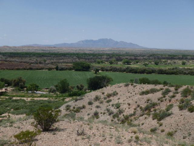 La Joya Farm, La Joya, NM 87028 (MLS #926360) :: Campbell & Campbell Real Estate Services