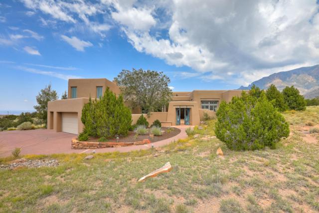 13709 Quaking Aspen Place NE, Albuquerque, NM 87111 (MLS #926368) :: Your Casa Team