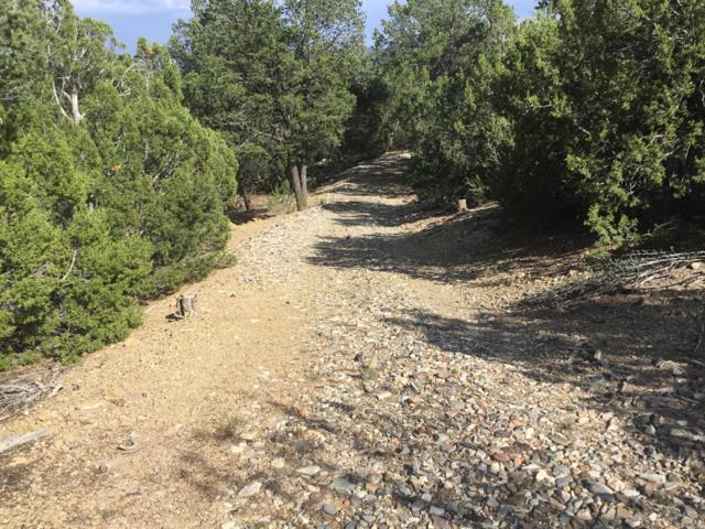 Eagle Trail, Tijeras, NM 87059 (MLS #926464) :: The Bigelow Team / Realty One of New Mexico