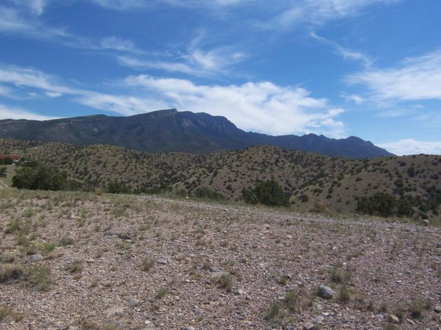 150 Overlook Drive, Placitas, NM 87043 (MLS #926615) :: Campbell & Campbell Real Estate Services