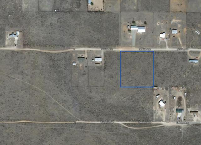 Seville Avenue, Moriarty, NM 87035 (MLS #927413) :: The Stratmoen & Mesch Team