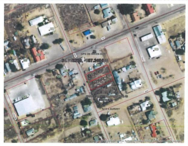 Ash Street, Magdalena, NM 87825 (MLS #927424) :: The Bigelow Team / Realty One of New Mexico