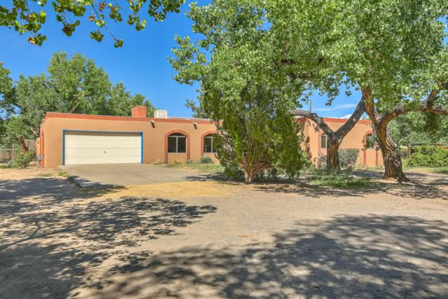 315 Target Road, Corrales, NM 87048 (MLS #927529) :: Campbell & Campbell Real Estate Services