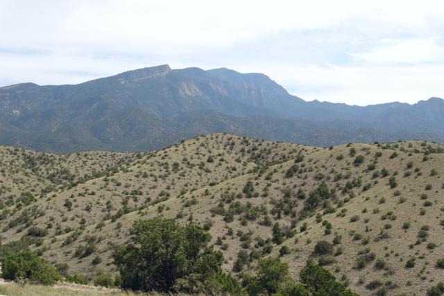 7 B&C Alto Court, Placitas, NM 87043 (MLS #927574) :: Campbell & Campbell Real Estate Services