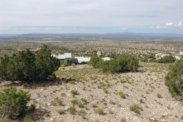 7B Alto Court, Placitas, NM 87043 (MLS #927576) :: Campbell & Campbell Real Estate Services