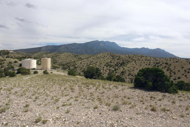 7C Alto Court, Placitas, NM 87043 (MLS #927577) :: Campbell & Campbell Real Estate Services