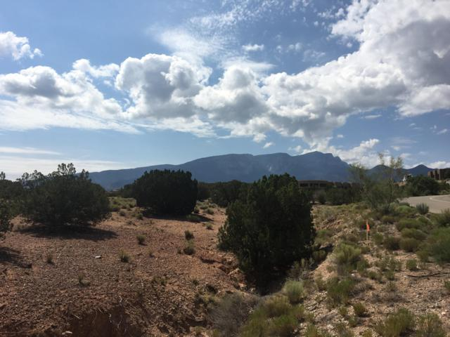 Anasazi Meadows Court Lot 114, Placitas, NM 87043 (MLS #927827) :: The Bigelow Team / Realty One of New Mexico