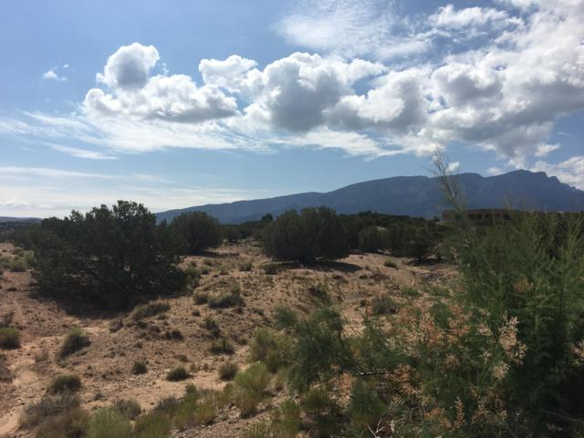 Anasazi Meadows Court Lot 115, Placitas, NM 87043 (MLS #927834) :: The Bigelow Team / Realty One of New Mexico