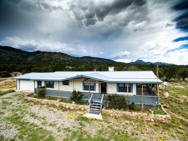 31 Sandoval Lane, Edgewood, NM 87015 (MLS #927860) :: Campbell & Campbell Real Estate Services
