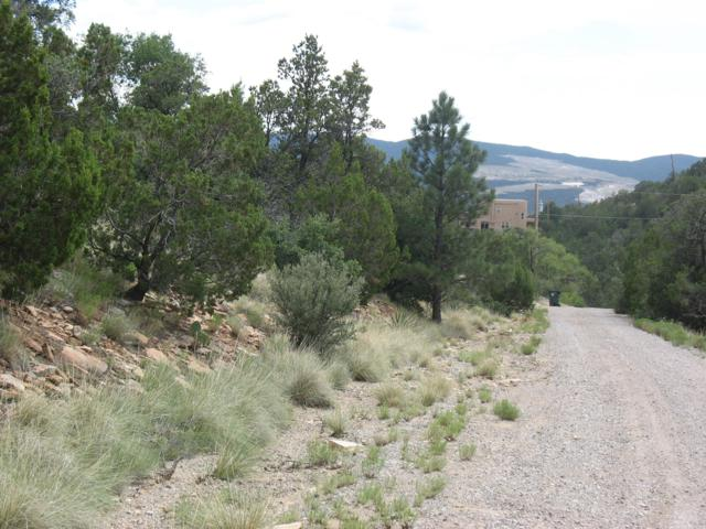 14 Cielo, Cedar Crest, NM 87008 (MLS #927886) :: Campbell & Campbell Real Estate Services