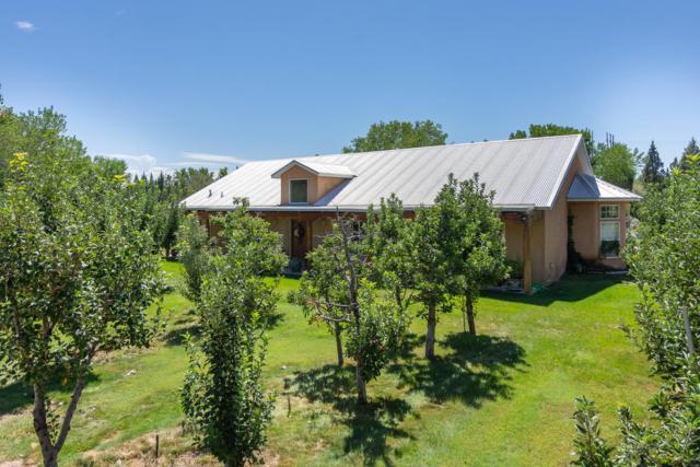 8621 Rio Grande Boulevard NW, Los Ranchos, NM 87114 (MLS #928282) :: Campbell & Campbell Real Estate Services