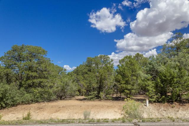 6 Coila Court, Tijeras, NM 87059 (MLS #928363) :: The Bigelow Team / Realty One of New Mexico