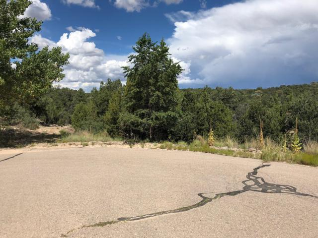 18 Tablazon Court, Tijeras, NM 87059 (MLS #928366) :: The Bigelow Team / Realty One of New Mexico