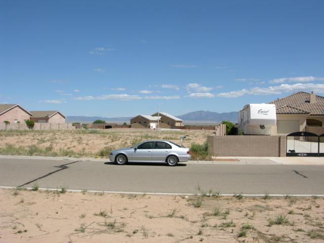 1160 Blanca Avenue NW, Los Lunas, NM 87031 (MLS #928397) :: The Buchman Group