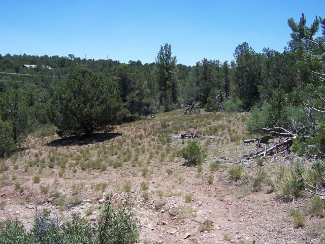 24 Quail Run Road, Tijeras, NM 87059 (MLS #928532) :: Your Casa Team