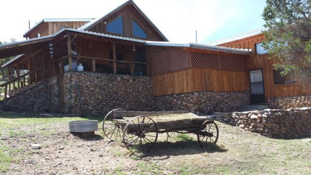 67 Comeback Way, Datil, NM 87821 (MLS #928577) :: Campbell & Campbell Real Estate Services