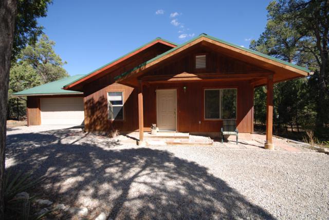 209 Raven Road, Tijeras, NM 87059 (MLS #928583) :: Your Casa Team