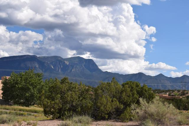 1 Alexi Place, Placitas, NM 87043 (MLS #928588) :: Campbell & Campbell Real Estate Services