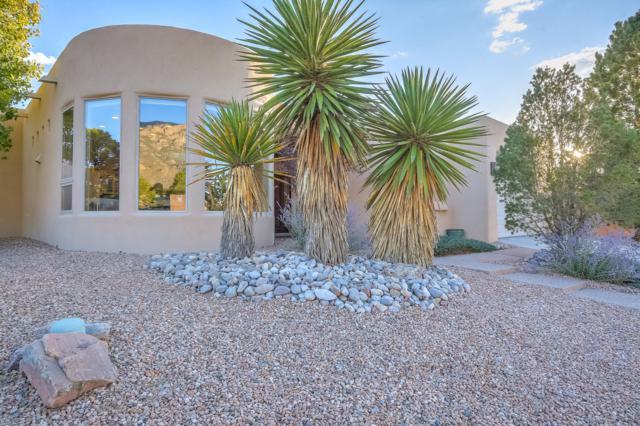8202 Indigo Avenue NE, Albuquerque, NM 87122 (MLS #928802) :: Your Casa Team