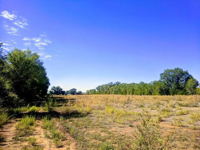 Miller Tract A Road, Los Chavez, NM 87002 (MLS #928847) :: The Bigelow Team / Realty One of New Mexico
