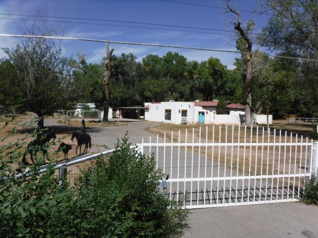 6821 Rio Grande Boulevard NW, Los Ranchos, NM 87107 (MLS #928867) :: Your Casa Team