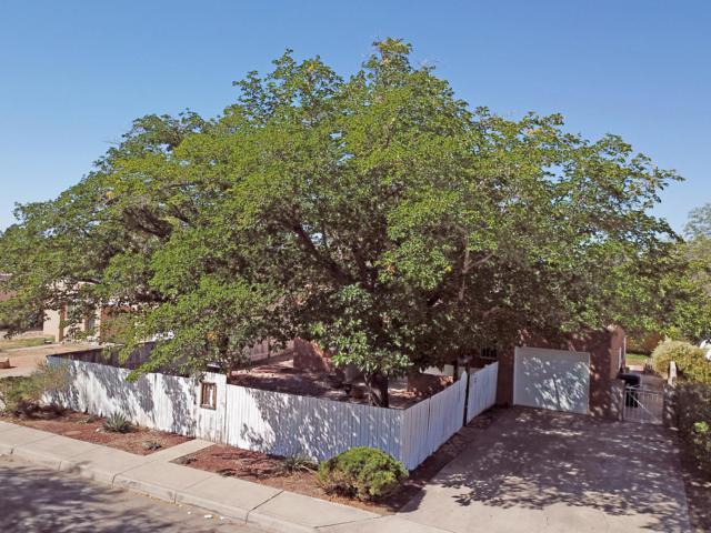 213 Cagua Drive NE, Albuquerque, NM 87108 (MLS #928879) :: Campbell & Campbell Real Estate Services