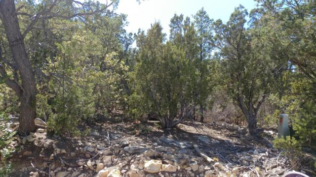 19 Tablazon Court, Tijeras, NM 87059 (MLS #929024) :: The Bigelow Team / Realty One of New Mexico